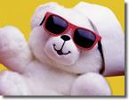 安定度抜群!White Bear V1 2013年06月の成績検証 +147pips