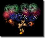 【2013/11】今年一番の稼ぎ頭?ナイトゼロFX2012の成績検証